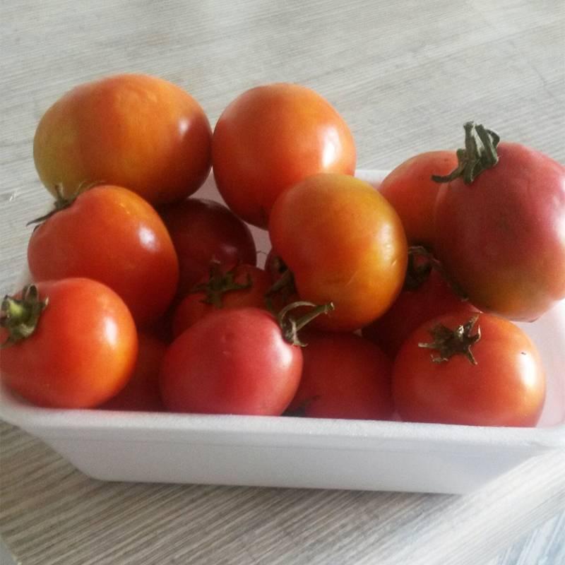 Остатки помидоров