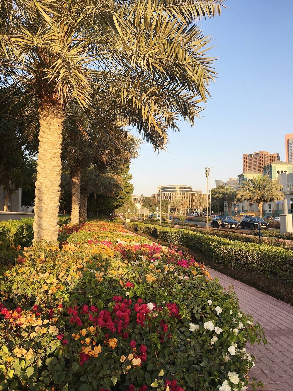 Улицы Дубая