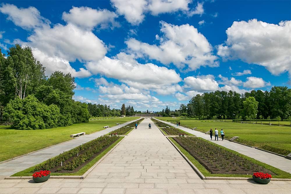 Пискаревское мемориальное кладбище. Источник: makalex69 / Shutterstock