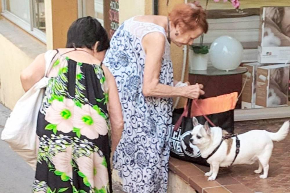 Обычно французские пенсионеры — это довольно бодрые бабули и дедули, которые любят гулять по городу со своими питомцами и сидеть в кафе, просто чтобы пообщаться друг с другом