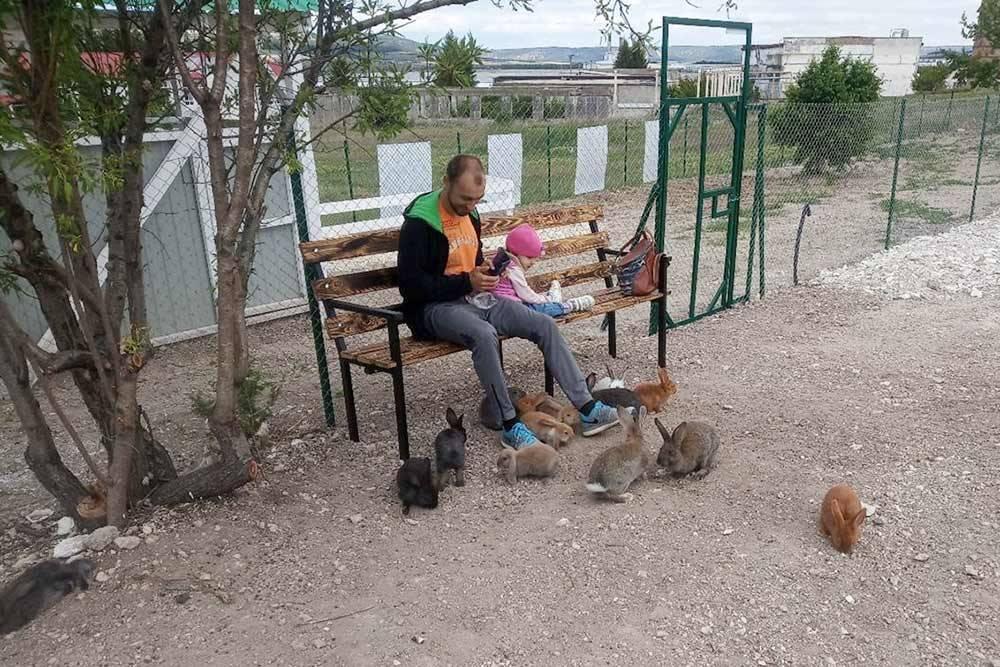 Контактная зона в «Кроликопарке»