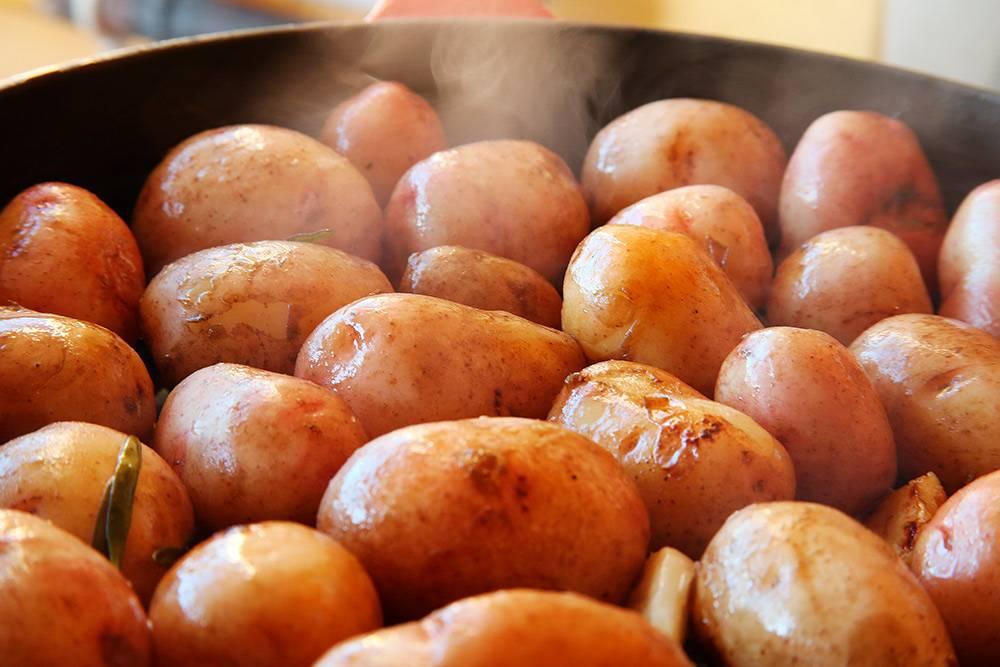 Приготовила молодой картофель по технологии су-вид: сначала варила в пакете притемпературе +85 °C на протяжении 90 минут, а потом обжарила. В пакет с картофелем добавила кусочек сливочного масла, пару долек чеснока, розмарин и соль
