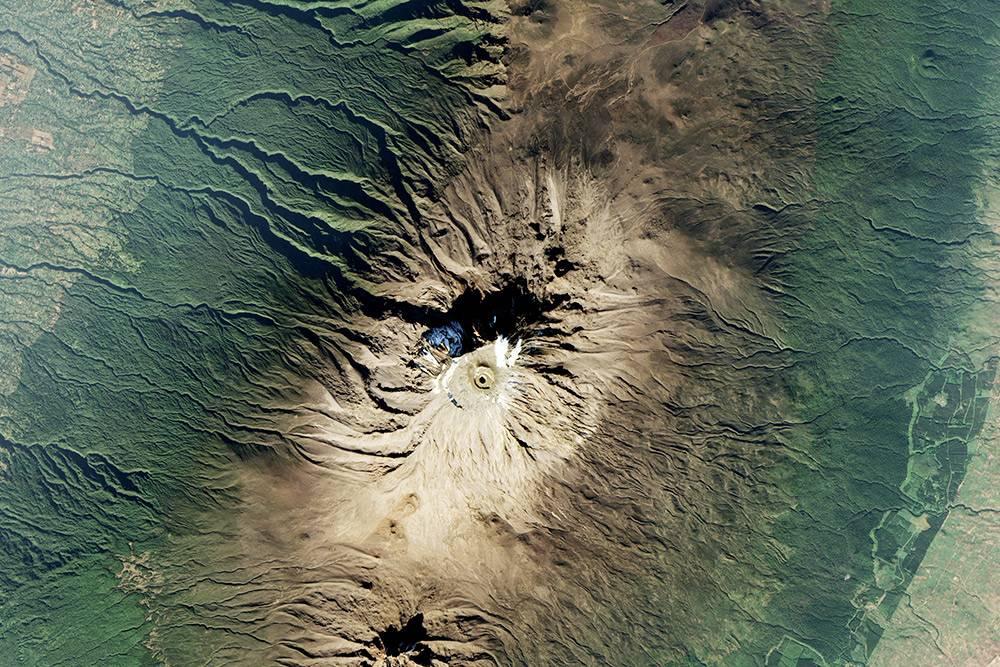 На снимке со спутника видно, как меняются природные зоны на пути квершине Килиманджаро: отсухой саванны через земледельческие районы кгустым тропическим лесам ипустынной зоне тундр иледников. Источник фото: NASA Earth Observatory