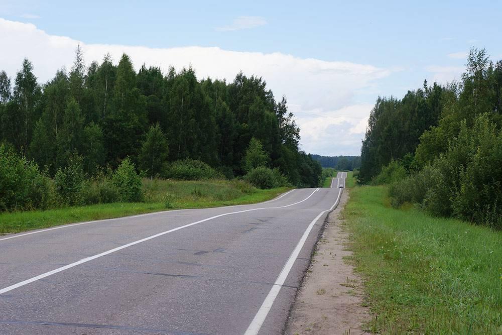 Пушкинские горы — это нетолько название. Местами там вот такие горки. Однажды мы задень накатали там 50км навелосипедах. Ночью эти горки мне снились