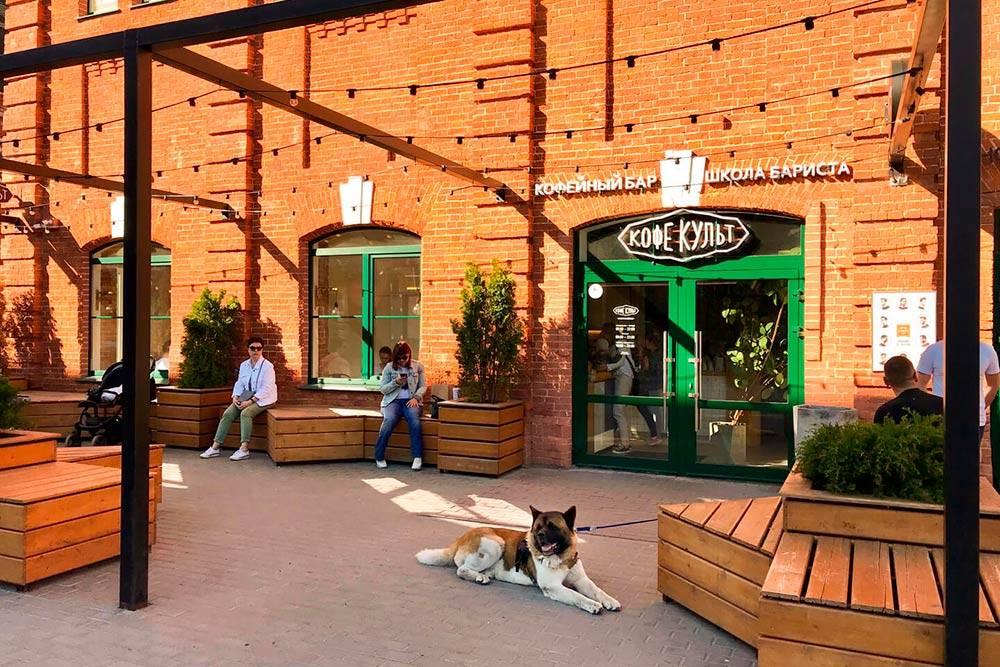 Пока не закончилась пандемия, в кафе нельзя, зато можно взять на «Ликерке» кофе и бутерброды и посидеть прямо около кафе. Так все и делают. Фото: www.coffee-cult.ru