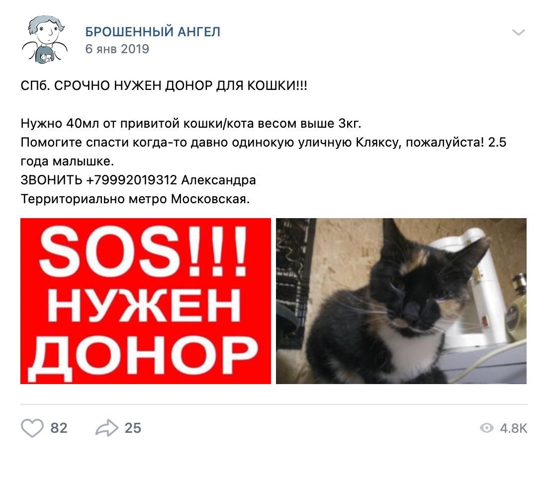 Объявления размещали в разных группах. Источник: «Вконтакте»