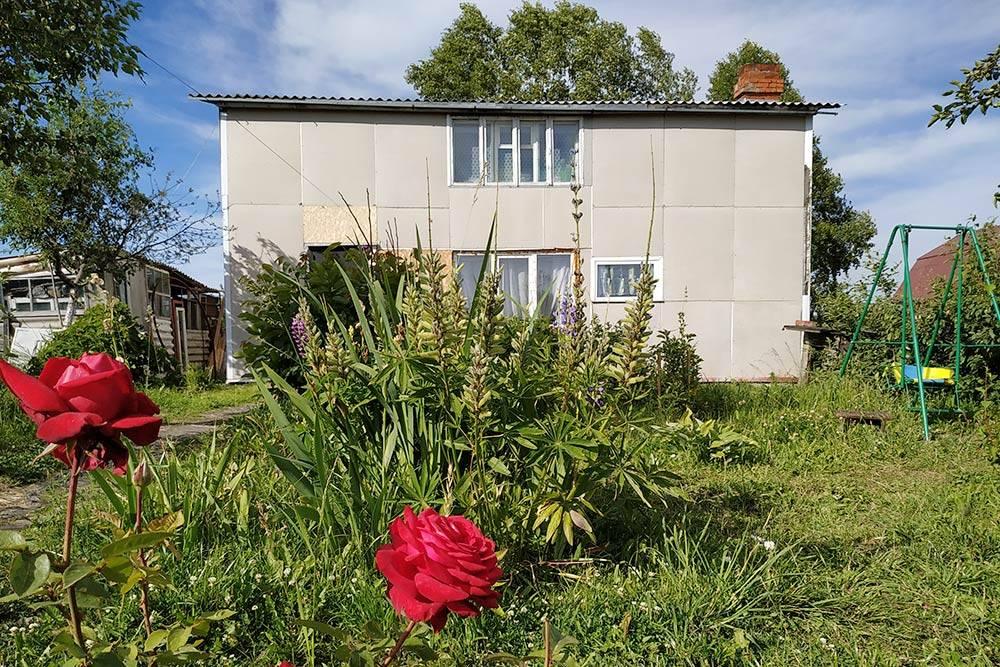 У нас теперь растут розы — их никто нетопчет, вотличие отклумб подокнами обычных многоквартирных домов