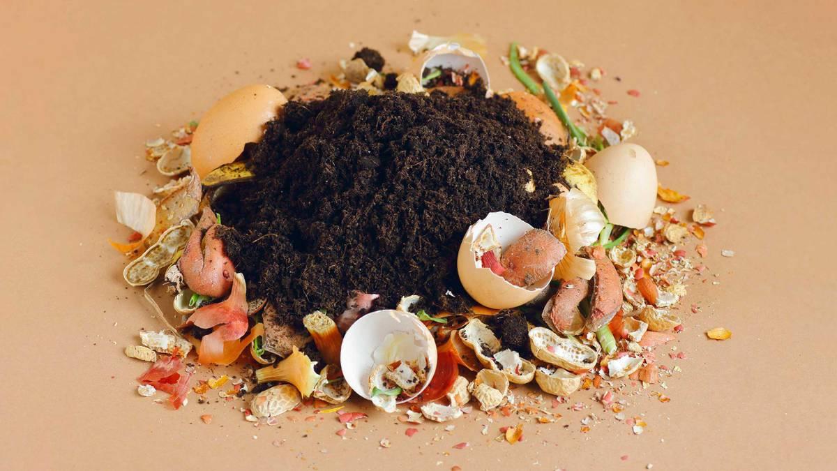 Сколько стоит перерабатывать пищевые отходы в вермикомпостере