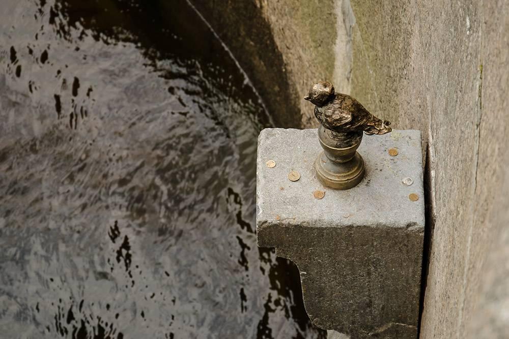 Чтобы сбылось желание, нужно кинуть Чижику-пыжику монетку. Но так, чтобы она осталась лежать на постаменте, а не упала в воду. Источник: Tamara Selivanova / Shutterstock