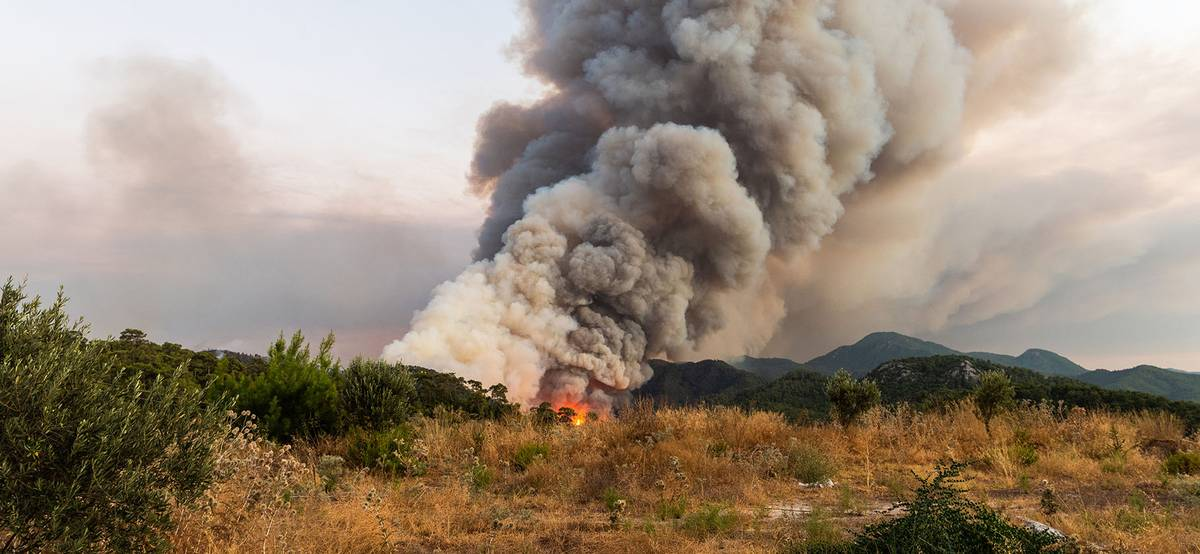 Турция охвачена лесными пожарами. Что нужно знать туристам