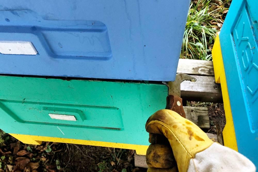 Одно из применений пчеловодной стамески — отрывать один прилипший корпус улья от другого. Руками этого не сделать