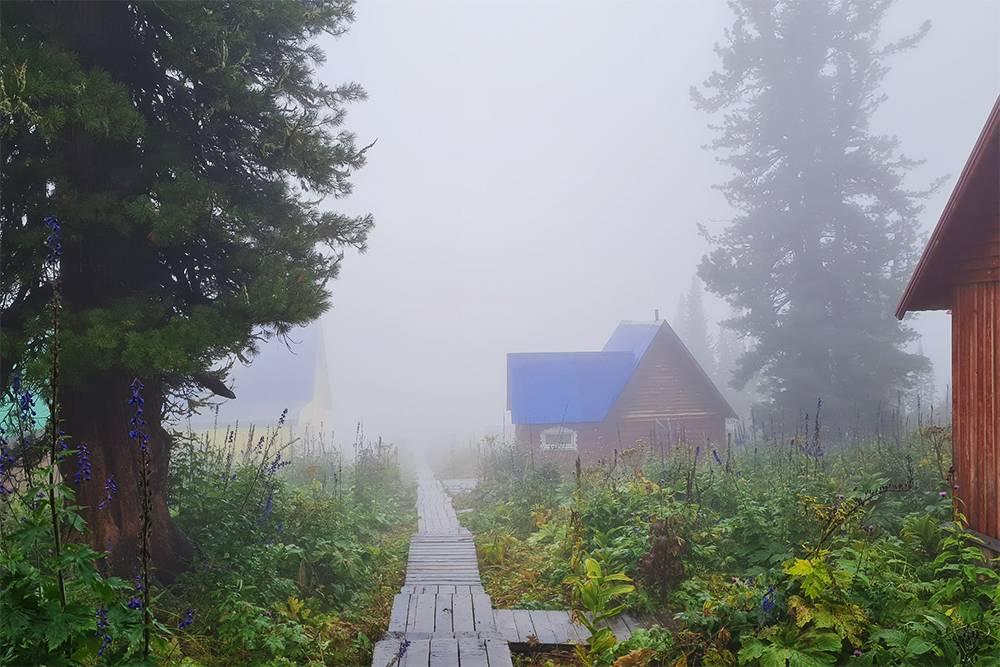 Туман настолько плотный, что метров через двадцать — непроглядная пелена