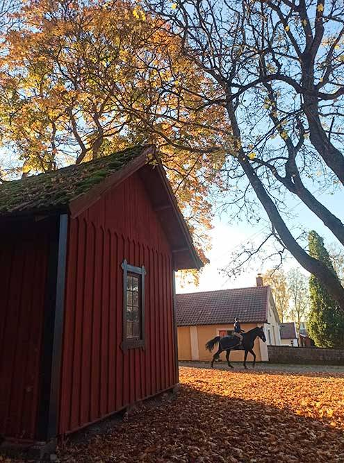 Тихая и спокойная шведская деревенька