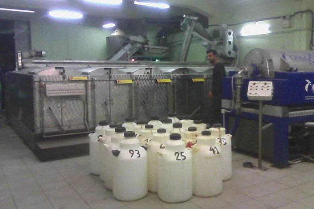 Зимой жители Крита в основном работают на сборе оливок и фабриках по отжиму масла. На такую фабрику мой муж привозит урожай оливок для отжима