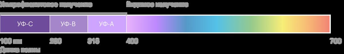 В отличие от обычной, ультрафиолетовая радуга невидима. Так что цвета, которыми она помечена на схеме, условны