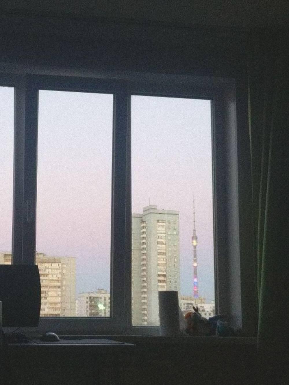 Из окна видно Останкинскую башню