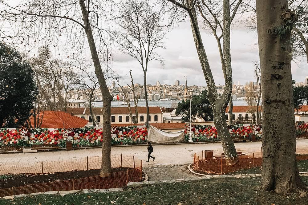 Так выглядит парк «Гюльхане» зимой. Весной и летом там цветут сотни тысяч роз, ирисов и тюльпанов