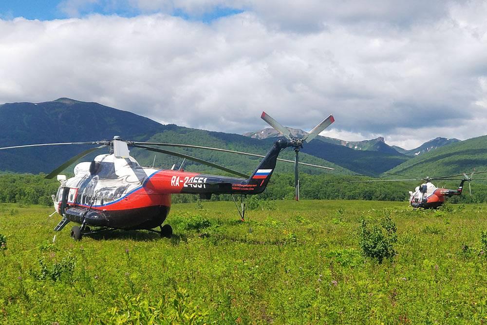 Вертолеты Ми-8 вНалычевской долине. Наодном изнихмывозвращались иззаповедника вПетропавловск