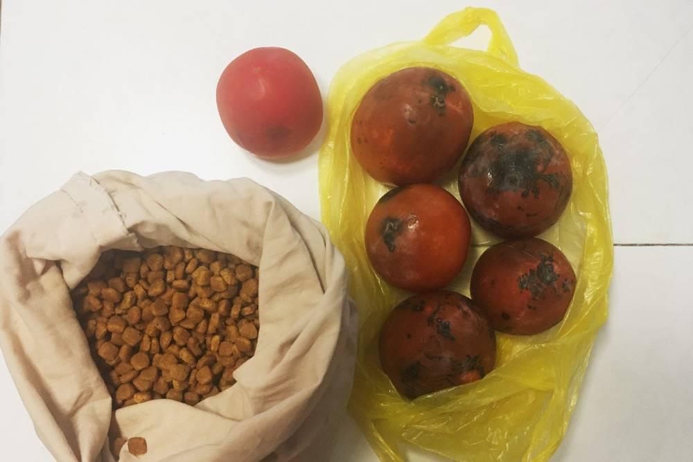 Мои покупки в шестой день эксперимента: помидор, хурма и корм длякошки