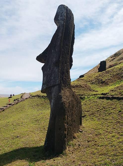 Статуи высечены из вулканических пород. Всего их около 900