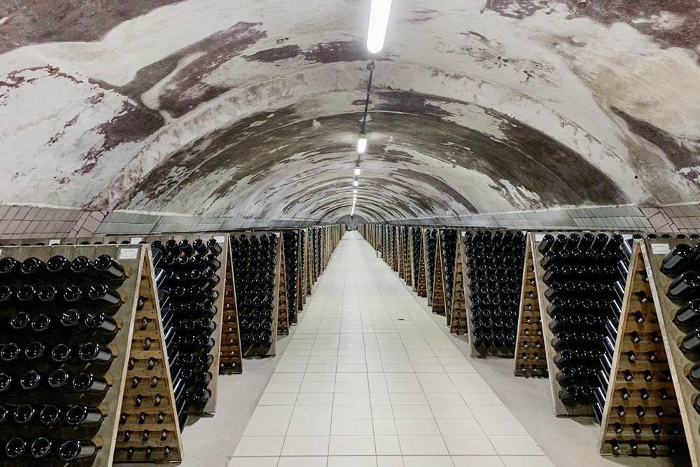 Разводы на потолке — это винная плесень. Гид назвала ее грибком-алкоголиком. Он создает микроклимат в винном подвале. Фото Оксаны Волковой