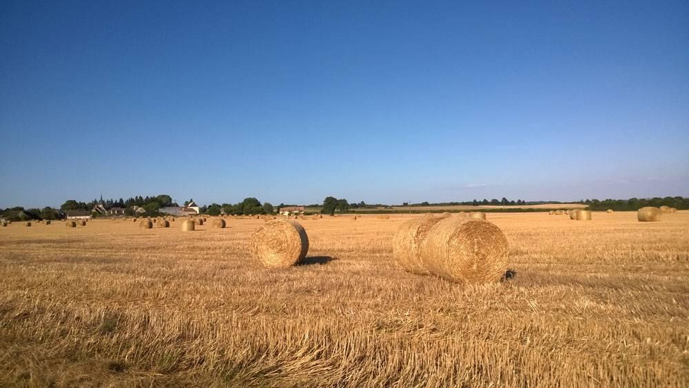 Типичный вид для французской провинции в конце лета