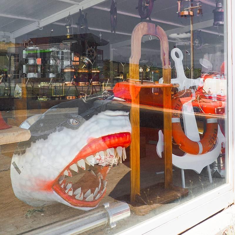 Что тут только не продают — даже судовую акулу