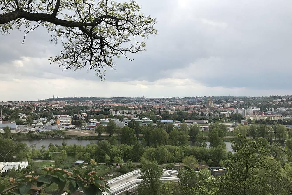 Вид на город с самой высокой точки зоопарка