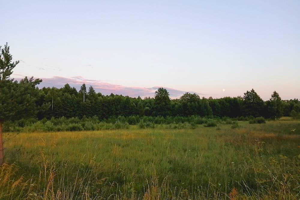На фоне тихих вечерних пейзажей сочаровательной простой красотой умирающие дома смотрятся еще печальнее