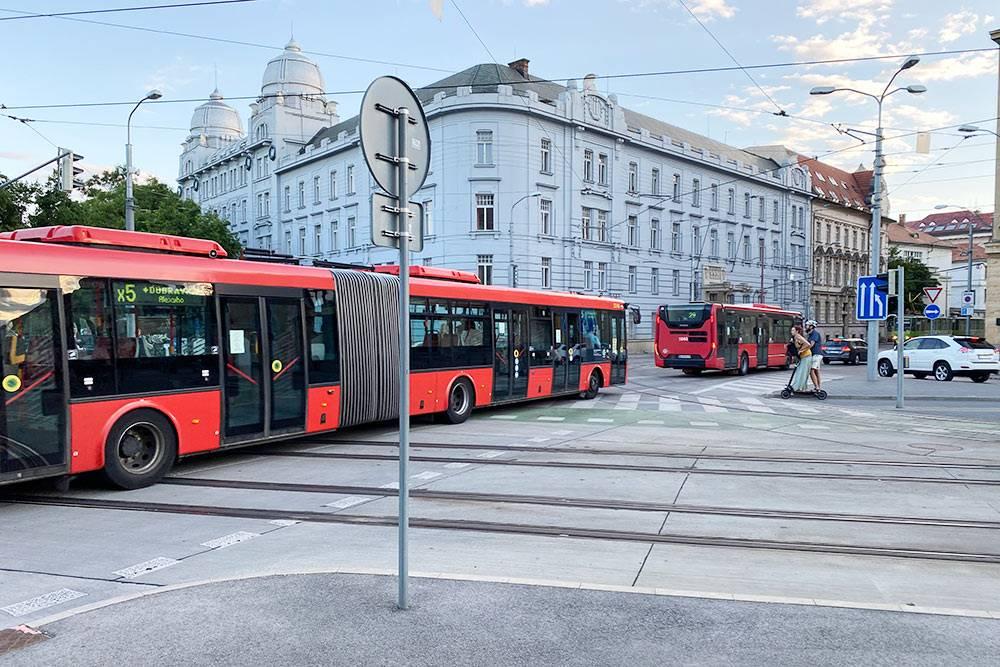 Автобусы в центре Братиславы