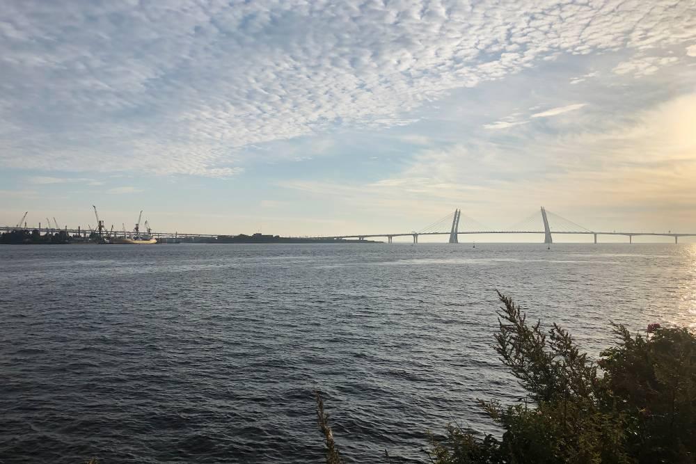 Фото из поездки в Санкт-Петербург — вид на вантовый мост рядом с пространством «К30»