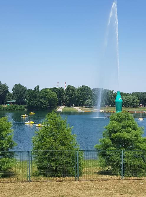 Ада-Циганлия утопает в зелени. Мне кажется, это лучшее место, чтобы спрятаться от солнца