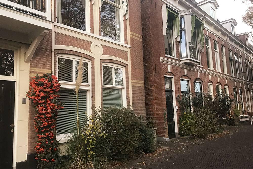 Старые жилые дома в Гронингене выглядят так