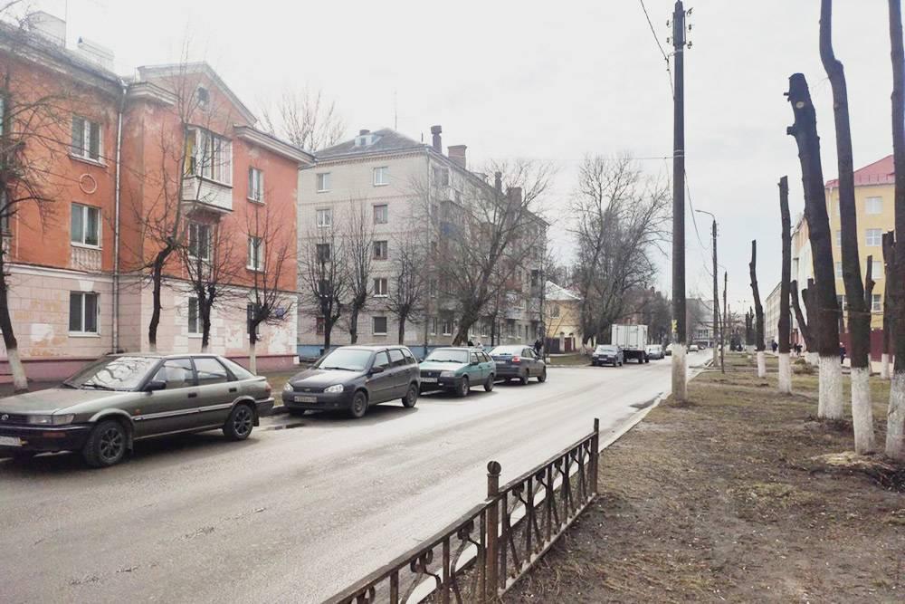Весной и осенью улицы Брянска выглядят уныло, в том числе из-за плохого благоустройства, а точнее, его отсутствия