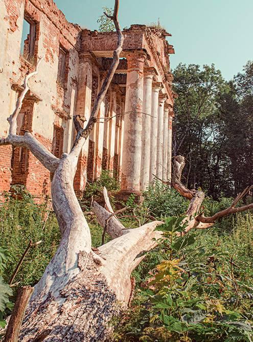 У усадьбы хорошо сохранился портик с колоннами