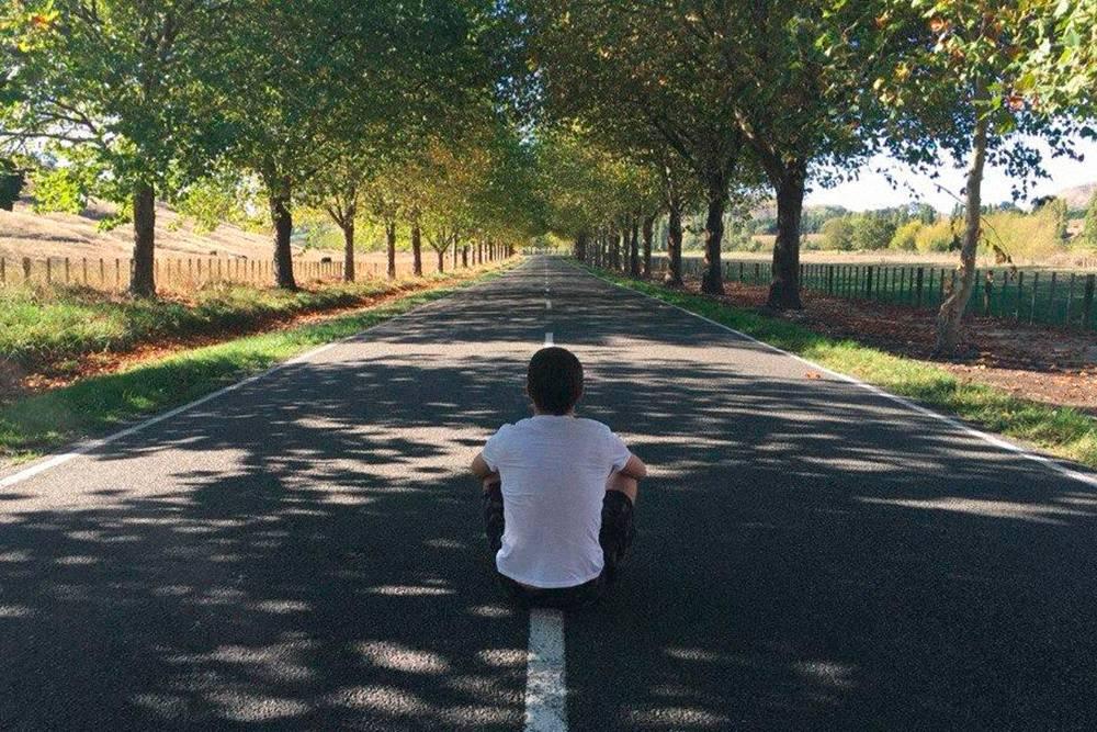 Дорога вдоль виноделен города Хастингса