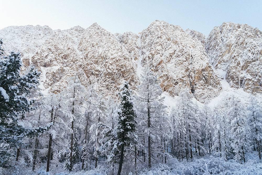 Заснеженные горы выглядят восхитительно