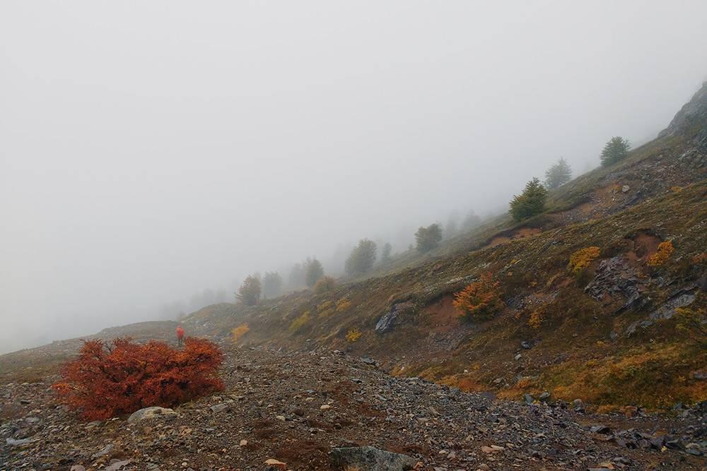 В апреле начинаются частые дожди, и тогда горы обволакивает густой туман. В таком тумане легко потеряться. Маркеров тропинок не видно