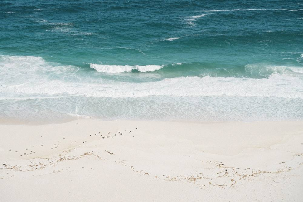 На пляж Dias в обычное время можно спуститься — туда ведет отличная деревянная лестница. Мы не попали на него, потомучто его закрыли из-за ограничений. Полюбовались пустынным пляжем со скал