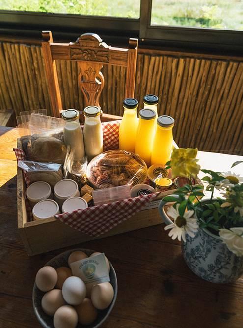 На ферме Oakhurst Farm Cottages нам принесли такой милый завтрак: все продукты — собственного производства