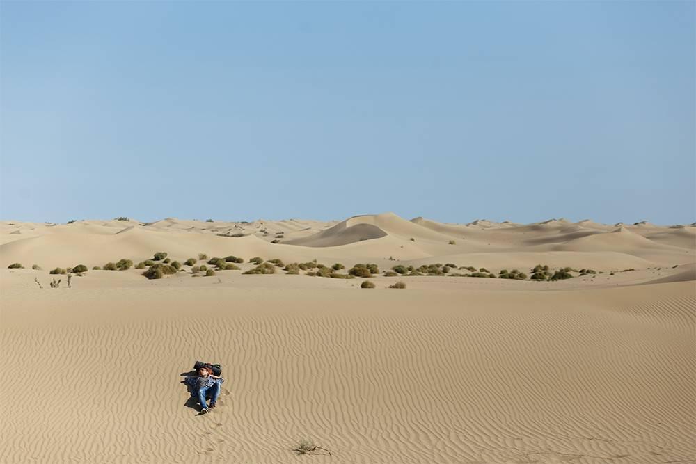 Мой друг нарушил правила и слез с тропы на песок, чтобы сделать этот кадр. Ни одно из животных и мой друг не пострадали