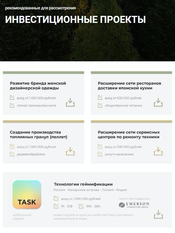 Мне предложили рассмотреть пять проектов. Один из них, мобильный сервис «Таск», реализуется приподдержке Emerson Consulting Group. Еще в одном, который касается топливных гранул, этакомпания выступает организатором