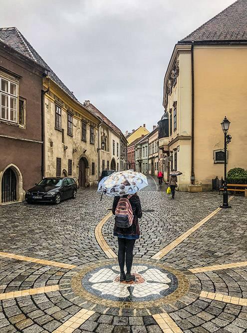 Шопрон понравится тем, кто любит побродить постарым мощеным улочкам иполюбоваться многовековыми зданиями