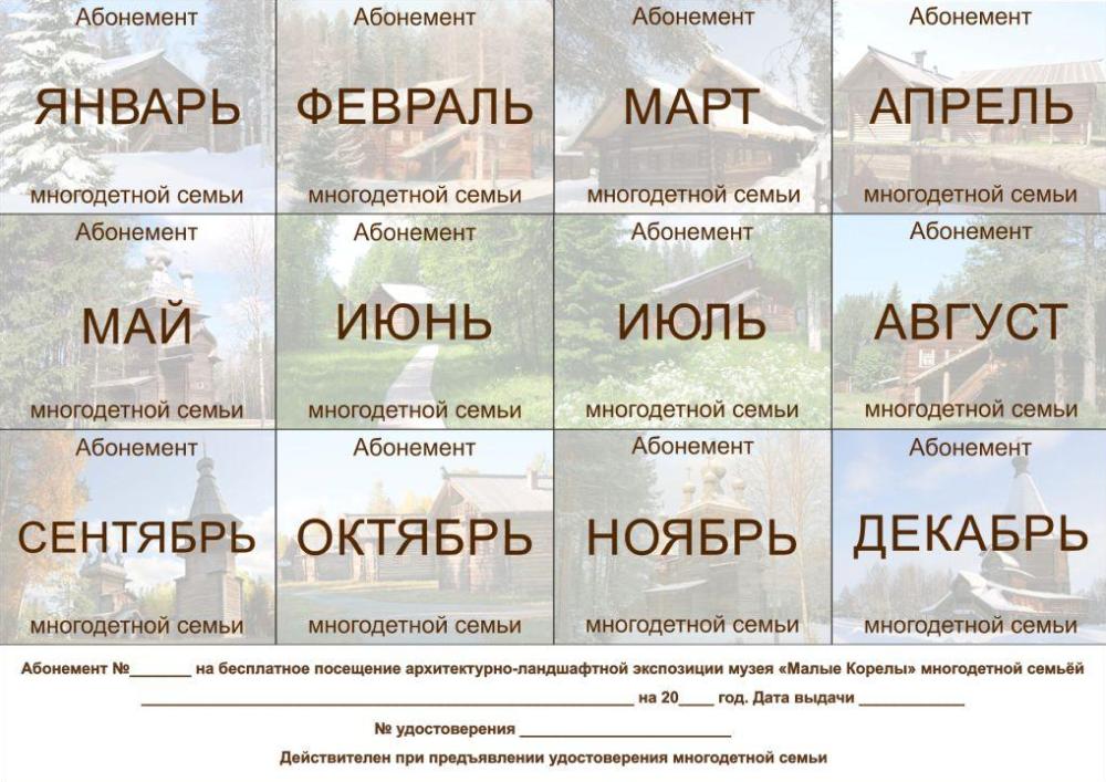 На таком абонементе билетеры отмечают, что семья уже воспользовалась правом бесплатного посещения в этом месяце. Если ячейка еще пустая, прийти можно в любой день. Источник:korely.ru