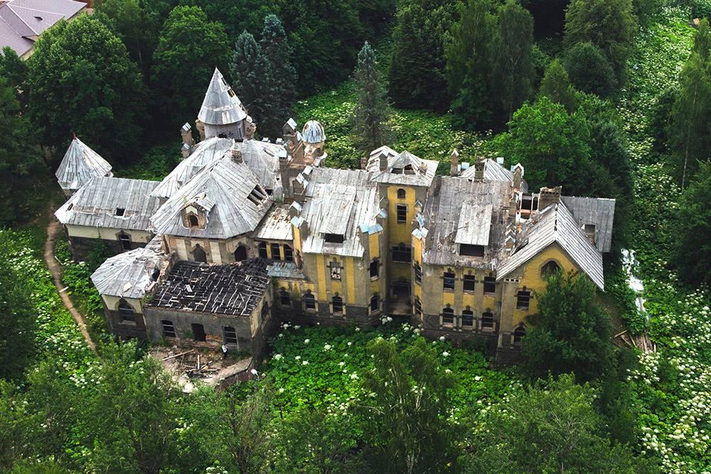 Вид на усадьбу Елисеевых с воздуха. Сзади в левом углу — здание НИИ, а вокруг раскинулся борщевик