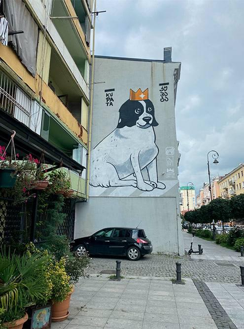 Собака Купата, которая защищает детей, идущих по пешеходному переходу