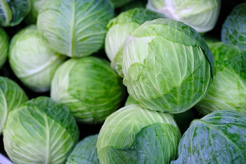 У молодой сочной капусты плотные, упругие зеленые листья. Они могут быть слегка подсохшими, этонормально. А вот капусту с коричневыми пятнами или влажными вмятинами покупать не стоит