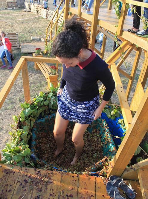 Мое любимое развлечение на Winefest — давить ногами виноград