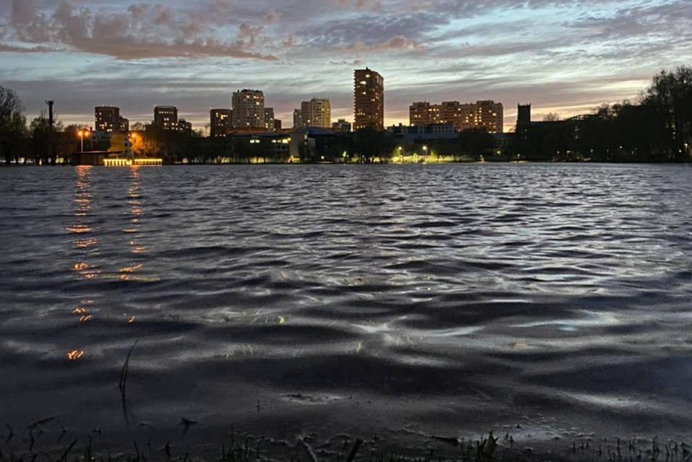Вечернее фото пруда