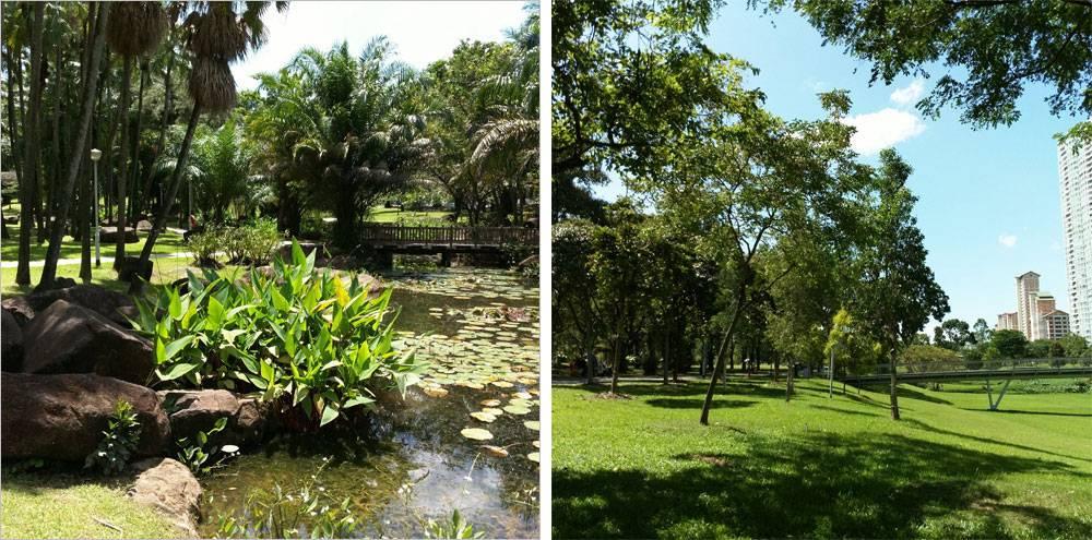 В Сингапуре много парков, все они удобные и ухоженные и расположены повсеместно